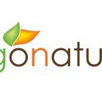 Gonatur Logo